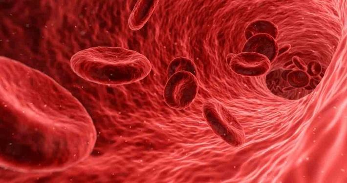 blood cells floating
